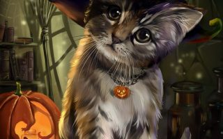 3D Cute Halloween Cat Wallpaper