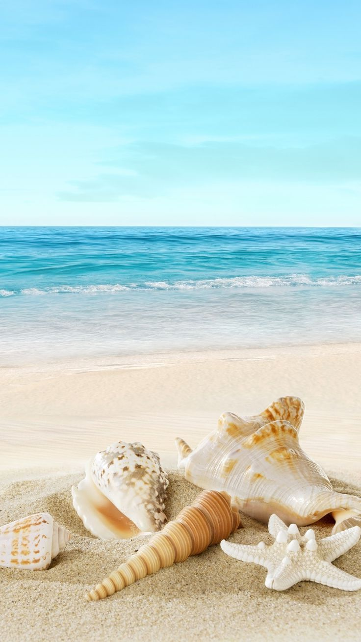 Beach Mobile Wallpaper HD 736x1308
