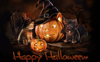 Happy Halloween Cat Cute Wallpaper