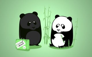 Wallpaper Cute Panda