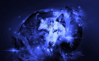 Best Cool Wolf Wallpaper HD With high-resolution 1920X1080 pixel. You can use this wallpaper for your Desktop Computer Backgrounds, Mac Wallpapers, Android Lock screen or iPhone Screensavers and another smartphone device